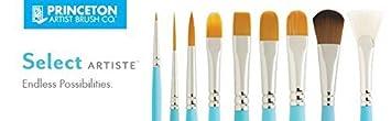 Princeton Artist Brush Select Synthetic Brush Petite Spotter Size 20//0