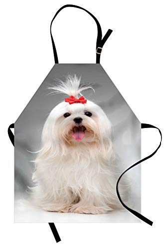 (Lunarable Bow Apron, Posing Playful White Maltese Dog Breed with Tiny Red Hairpin Holding Updo Hair Image, Unisex Kitchen Bib Apron with Adjustable Neck for Cooking Baking Gardening, Pearl Grey)