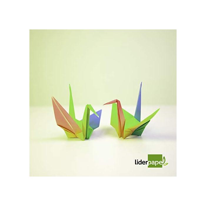 31SeJywR8HL Haz clic aquí para comprobar si este producto es compatible con tu modelo Bloc de trabajos manuales de cartulina 10 hojas de colores surtidos