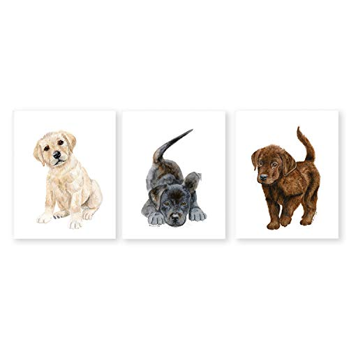 (Set of 3 Puppy Nursery Prints, Baby Animal Portraits - Black, Yellow and Chocolate Labrador Retrievers - Various Sizes Available)