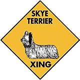 Warning! Skye Terrier Xing Aluminum Dog Sign, 12 x 12