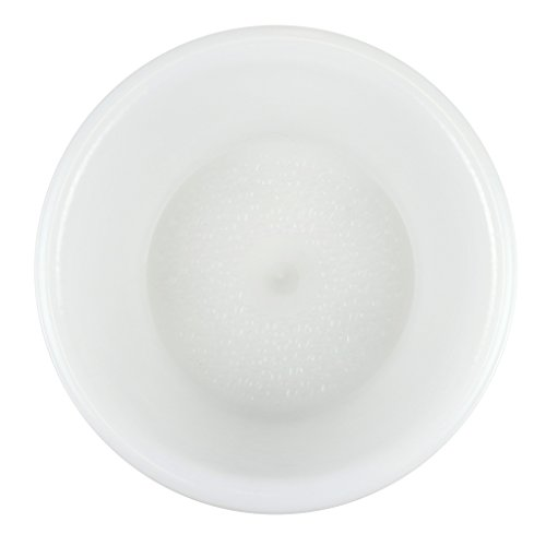 Signature Pedicure Bowl - Frost by Noel Asmar (Image #1)