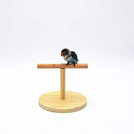 Juguete Nikgic Loros Madera Para Pequeñas Soporte De Mascotas bgy76vfY