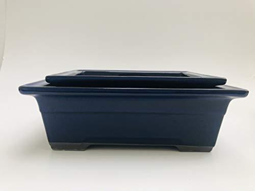 Kotobuki Japanese Glazed Bonsai Rectangle Blue Pot : 1set/2pcs #19-25 ()
