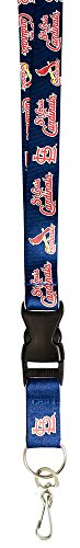 MLB St. Louis Cardinals Lanyard, (St Louis Cardinals Fan)