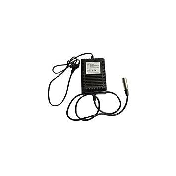 Cargador NiMH para batería 24 V punta a: Amazon.es: Deportes ...