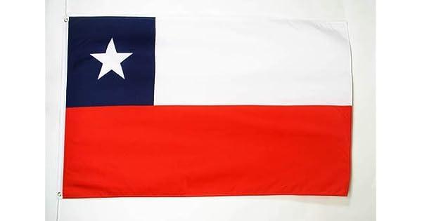 Amazon.com: Chile Bandera 2 x 3 – Chilean Banderas Bandera ...