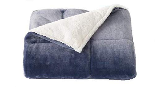 Cuddl Duds Soft Cozy Quilted Down Alternative Blanket Throw in Blue - By ()