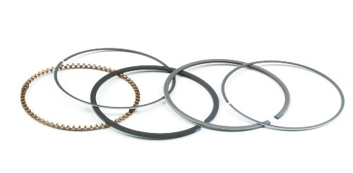 Briggs & Stratton 843953 Ring Set ()