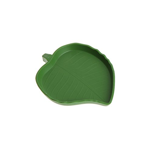 - Onpiece New Reptile Water Food Dish Bowl Plastic Gecko Meal Worm Feeder Leaf Shape 2size