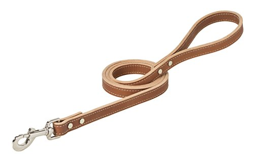 Weaver Pet Single-Ply Leather Dog Leash - Single Ply Leather