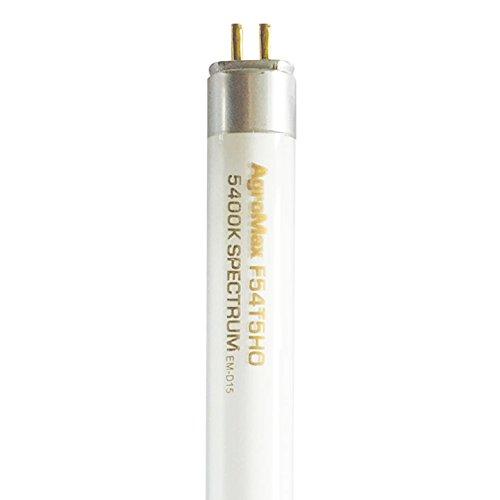 25-Pack AgroMax 4 Foot (45.75'') 5,400K Super Veg T5 Fluorescent Grow Light Bulbs - (25) F54T5HO Bulbs by AgroMax (Image #1)