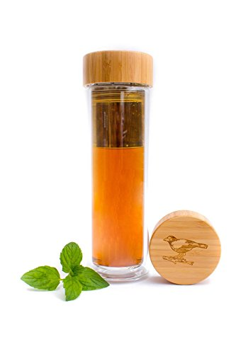 Tea Infuser Glass Bottle and Tumbler with FREE INSULATOR SLEEVE - Great for Hot or Cold Tea Leaves & Fruits - 100% Organic Bamboo lid - 15 oz - Stainless Steel Filter - Design by Purity (Aladdin Jasmin)