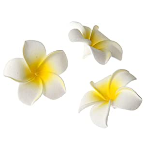 20 Pcs DIY Artificial Plumeria Hawaiian PE Foam Flower for Wedding Party Home Decoration White Yellow (3.5 Inch) 3