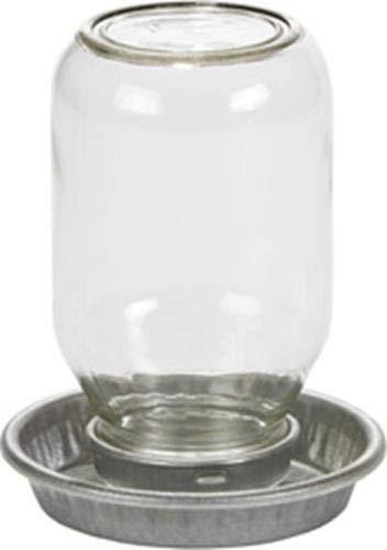 - Miller 957782 Little Giant Mason Jar Baby Chick Waterer Clear, 1 Quart