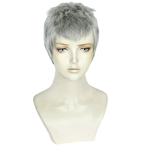(Heat Resistant synthetic Anime Silver gray Short Cosplay Wig Halloween Christmas Carnival Dress Up Pretend)