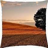 cut wheat fields - Throw Pillow Cover Case (18