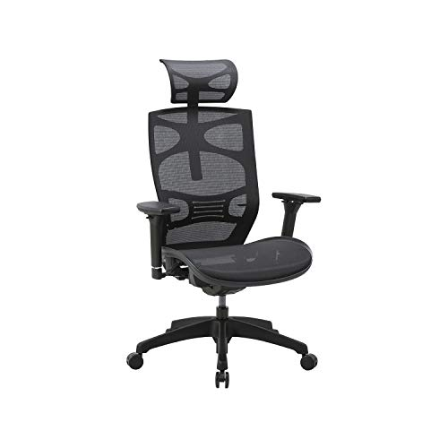 CLATINA Ergonomic Mesh Executive Chair with 4D Arm Rest and Adaptive Synchronize Seat High Back Swivel for Home Office BIFMA Certified
