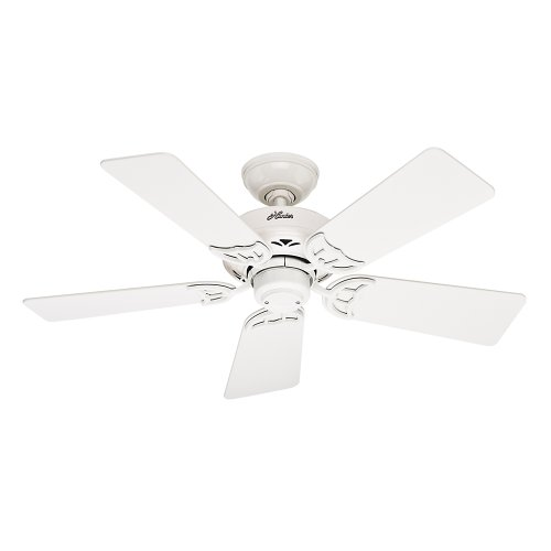 Hunter 52065 Hudson 42-Inch Ceiling Fan with Five White/Light Oak Blades, White ()