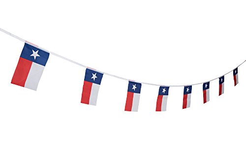 100 Feet Texas Lone Star State Flag Banner,TX State Flag Banner,Party Decorations For School Event,Sport Events,Festival -