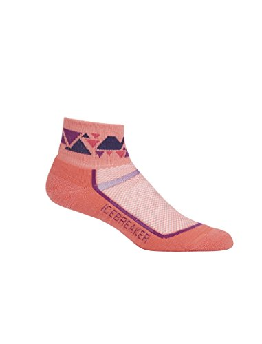Socks Outdoor Light Mini (Icebreaker Women's Multisport Light Mini Socks, Tulip/Vivid, Large)