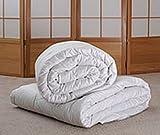 Sweet Dreams All-natural Tussah Silk Queen Comforter
