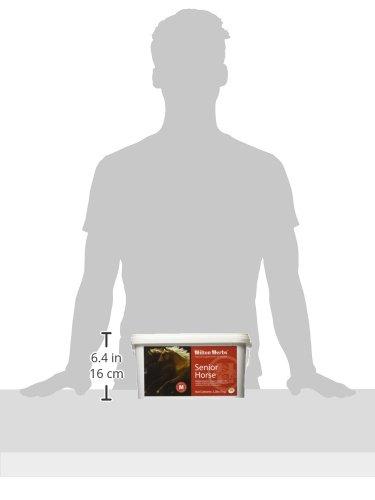 Hilton Herbs Senior Horse Herbal Health Supplement, 1kg Tub by Hilton Herbs (Image #2)