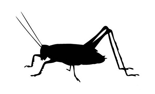 - Cricket Insect Pest - Vinyl Decal Sticker, Die cut vinyl decal for windows, cars, trucks, tool boxes, laptops, MacBook - virtually any hard, smooth surface