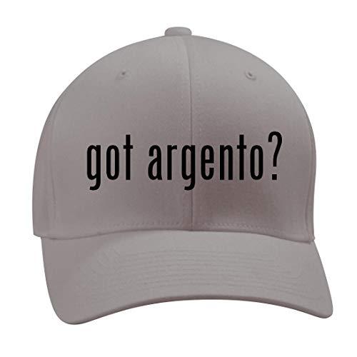got Argento? - A Nice Men's Adult Baseball Hat Cap, Silver, Small/Medium