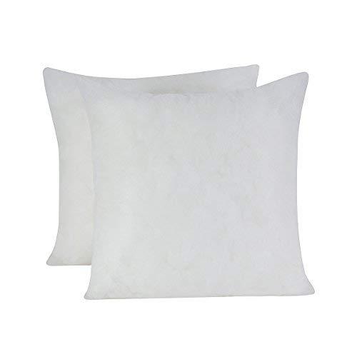 HOMESJUN Set of 2, Square Decorative Poly Throw Pillow Inser