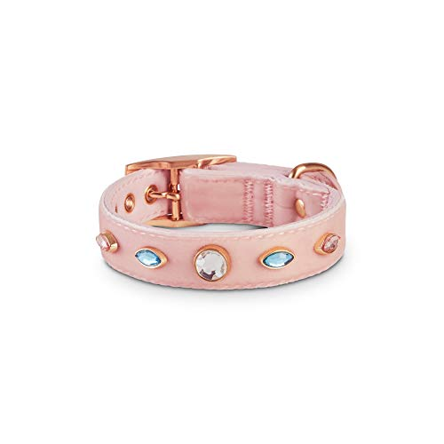 - Bond & Co. Bark Avenue Dog Collar, XX-Small