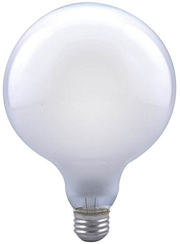 Sylvania 15793 Decorative Light Globe Light Bulb, 100 Watts (Globe Incandescent Sylvania)