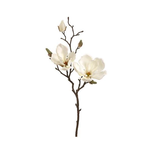 19″ Magnolia Spray Cream (Pack of 12)