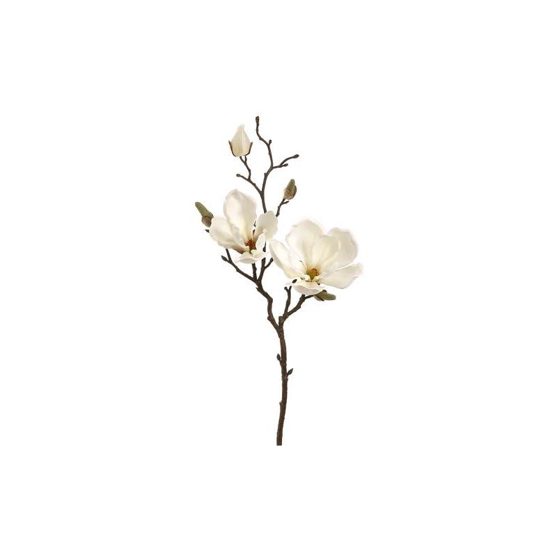 """silk flower arrangements 19"""" magnolia spray cream (pack of 12)"""