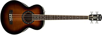 Acoustic & Acoustic-Electric Bass Guitars