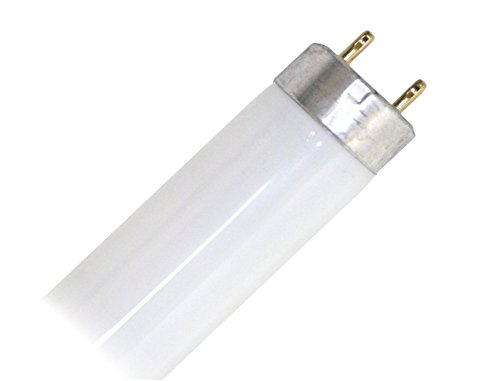 WestingHouse F15T8/SW - 15 Watt Soft Warm WhiteT8 Fluorescent Tube Light Bulb 18