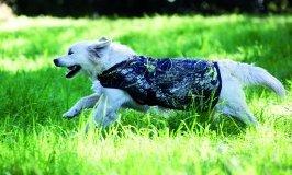 Rambo Camoflauge Dog Blanket XX-Large by Rambo Blankets