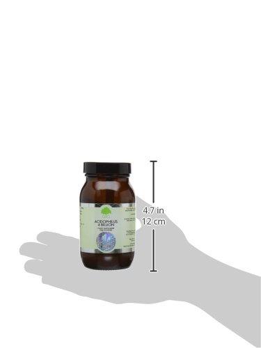 G&G Vitamins Lactobacillus Acidophilus Powder - Buy Online in UAE