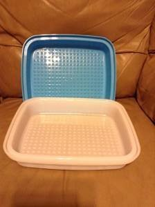 Tupperware Season Server Container Clear with Salt Water Taffy Blue Seal