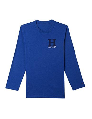 (Tommy Hilfiger Little Boys' Dustin-Bex Jersey Long Sleeve Tee, Matt Monaco Blue, 4)