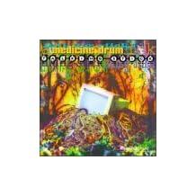 Talking Stick by Medicine Drum (1999-10-05)