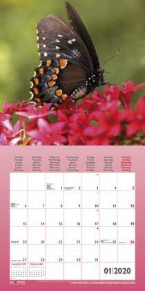 Traumg/ärten und Platz f/ür Eintragungen teNeues-Verlag Garden /& Decoration offen 30 cm x 60 cm Broschurkalender Kalender 2020 Wandkalender mit Poster 30 cm x 30 cm Art /& Image