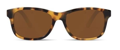 Frame Pure Tokyo Lens Vuarnet Vl130300042121 Sunglasses Tortoise Brown pq7A6Aw