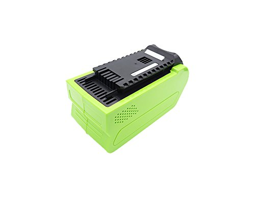 Cameron Sino Replacement Battery for GreenWorks 20292, 20302, 20672, 21332, 24102, 24322, 25302, 2601402, 29302, 29463, G-MAX 40V (5000mAh)