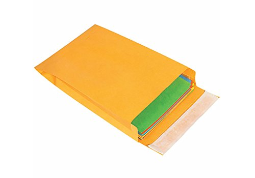 RetailSource E120902ES50 Expandable Self-Seal Envelopes, 12