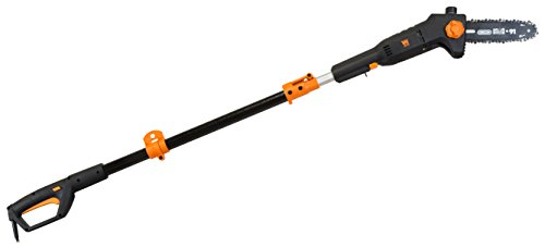 WEN 4019 6-Amp 8-Inch Electric Telescoping Pole Saw with 12-Foot Reach