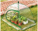 GreenThumb Pop-Up Greenhouse For Sale