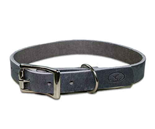 sleepy pup Full Grain Thick Leather Dog Collar - Made in The USA (X-Large: 22