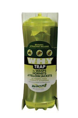 w-h-y-wasp-hornet-yellowjacket-reusable-trap