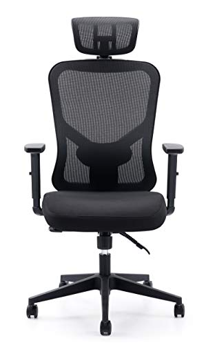 Cedric Office Chair Home Computer Chair Ergonomic Adjustable Headrest PU-Armrest Lumbar Support Mesh Nylon CD-861FH